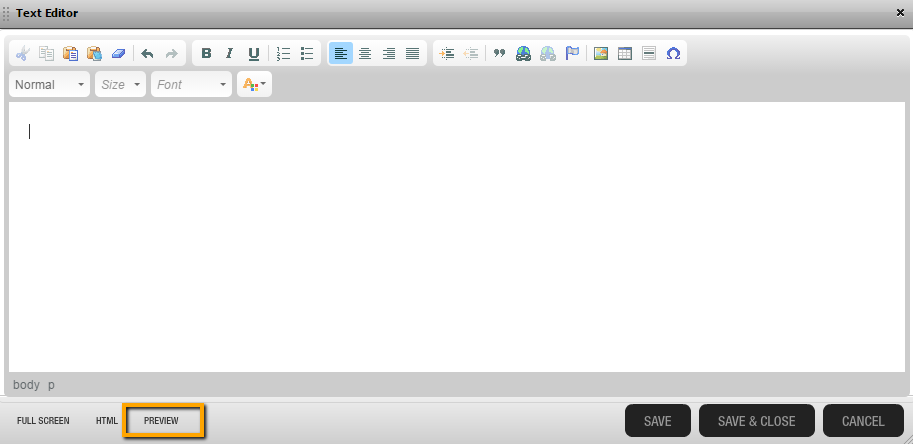 Real Time Solutions Text Editor Preview Function